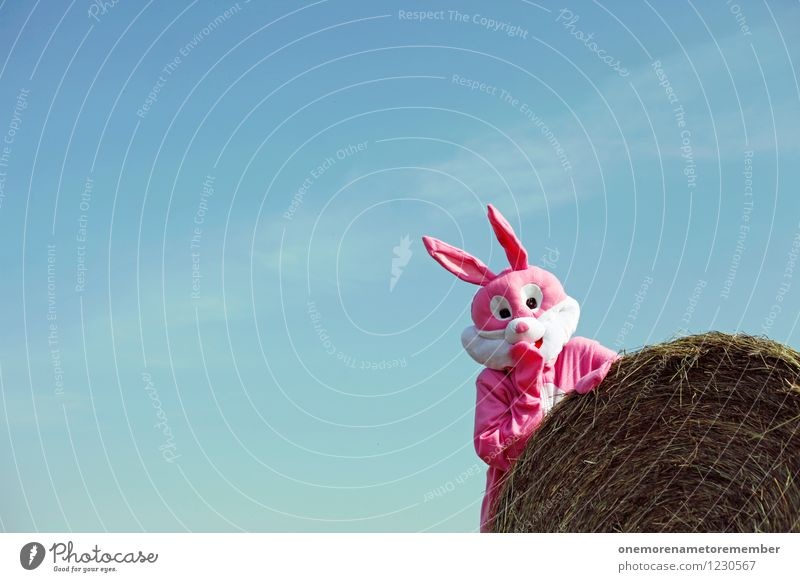 UPSIHU! Kunst Kunstwerk Abenteuer ästhetisch Hase & Kaninchen Hasenohren Hasenjagd Hasenbraten Hasenzahn Hasenpfote rosa Karnevalskostüm Strohballen verstecken