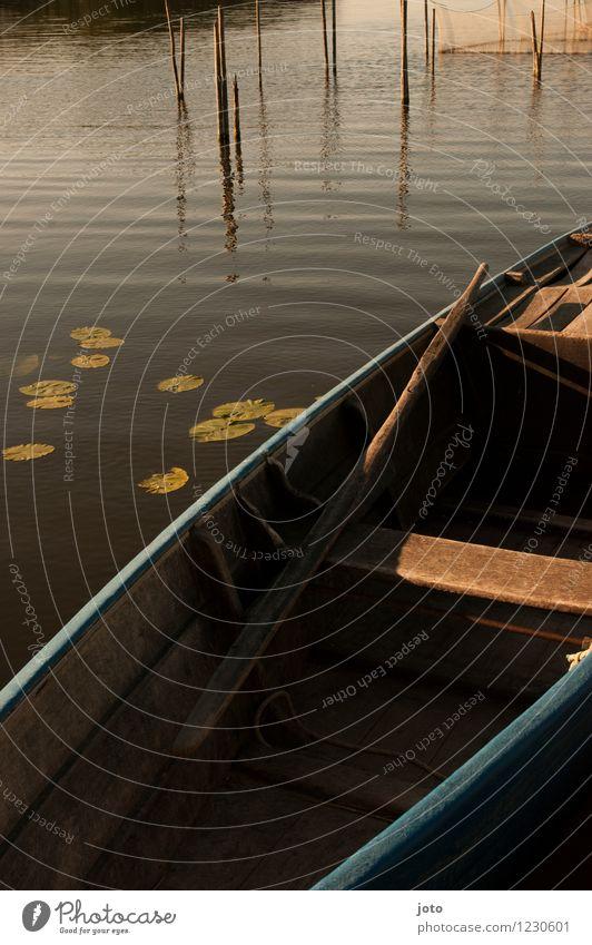 zeit am see Ferien & Urlaub & Reisen Sommerurlaub Sonne Schönes Wetter Seerosen maritim Erholung Frieden Idylle stagnierend Stimmung Wasserfahrzeug Fischernetz