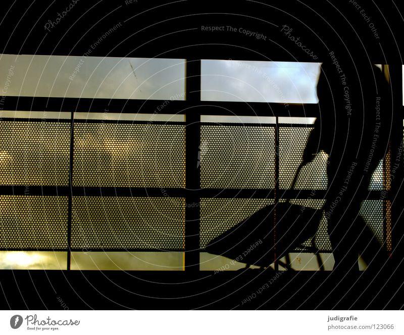 Schwarzarbeit Mensch Mann Himmel schwarz Farbe dunkel Arbeit & Erwerbstätigkeit Linie fahren Güterverkehr & Logistik Baustelle Handwerk Zaun aufwärts Barriere