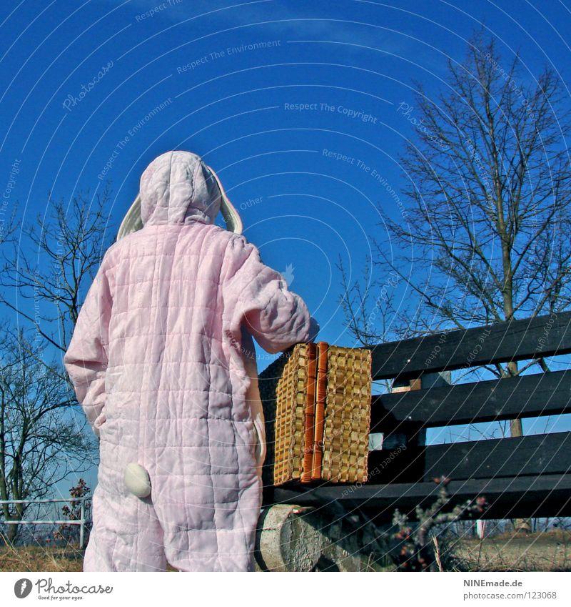 HasenMission | 2008 - pause Mensch Himmel Natur blau weiß schön Baum Freude Einsamkeit Tier Holz Wärme Wege & Pfade Stein Denken lustig