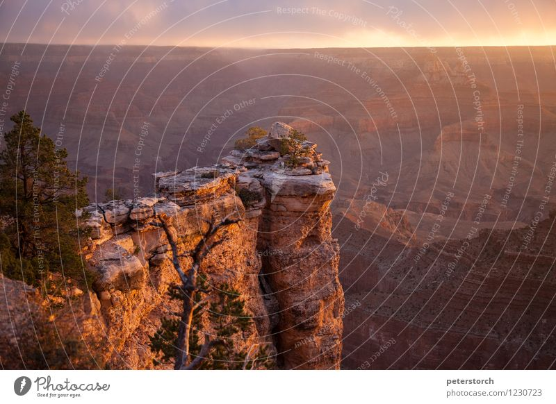 atemberaubend Ferien & Urlaub & Reisen Ferne Landschaft Felsen Schlucht Grand Canyon ästhetisch außergewöhnlich fantastisch Stimmung Abenteuer Farbe Horizont