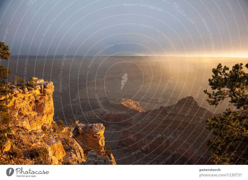 Sonnenaufgang am Grand Canyon Ferien & Urlaub & Reisen Ferne Landschaft Wolken Baum Felsen Schlucht außergewöhnlich fantastisch Stimmung Abenteuer ästhetisch