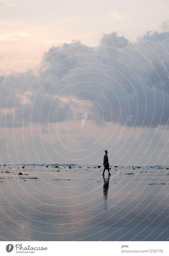 allein Mensch Ferien & Urlaub & Reisen Sommer Sonne Erholung Meer Einsamkeit ruhig Ferne Bewegung Freiheit Stimmung gehen Horizont Zufriedenheit nachdenklich