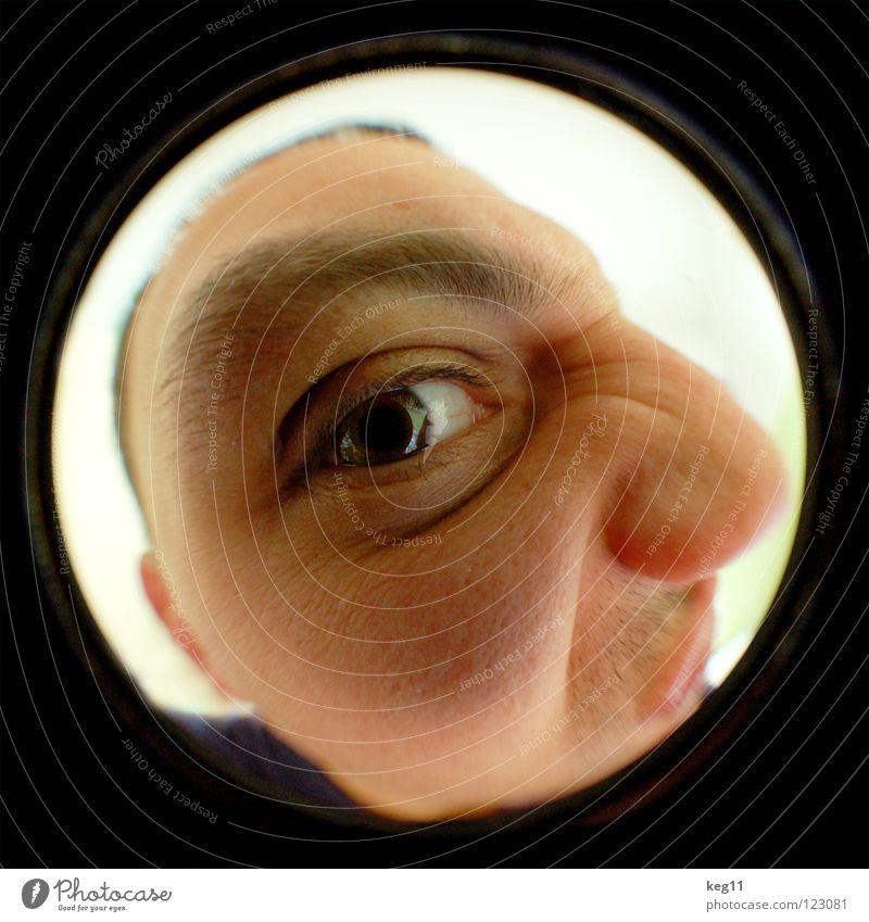 fischAUGE pt.3|3 blau weiß grün schwarz Gesicht Auge Kopf Haare & Frisuren braun Tür Haut Mund Nase Ohr Lippen Röhren