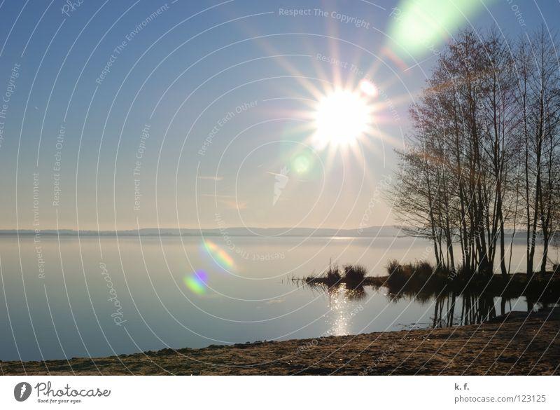 Wintertag Wasser Sonne Strand See Küste Blauer Himmel Steinhuder Meer