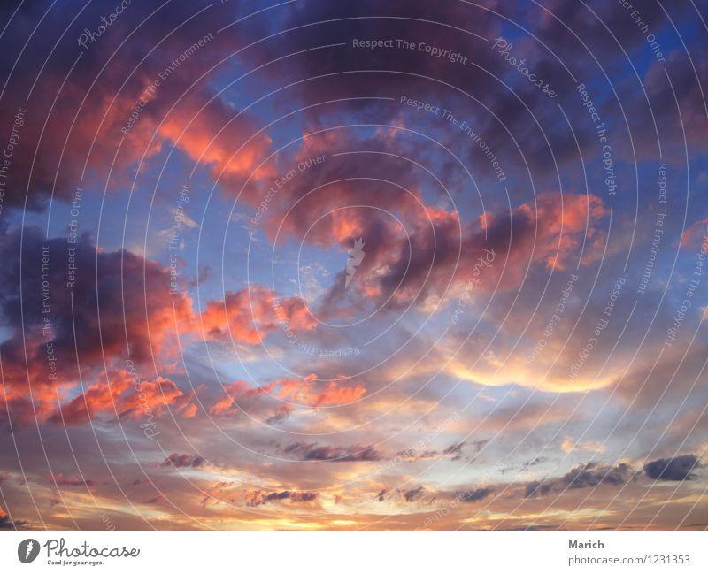 wolkenreicher Abendhimmel Umwelt Natur Luft Wolken Sonnenaufgang Sonnenuntergang Schönes Wetter Gefühle Stimmung Fernweh einzigartig Unendlichkeit Wolkenhimmel