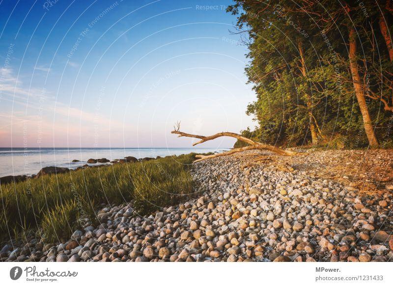 #rügen Umwelt Himmel Wolken Sonnenaufgang Sonnenuntergang Sonnenlicht Sommer Schönes Wetter Wellen Küste Strand Ostsee Meer Sumpf blau orange weiß Stimmung