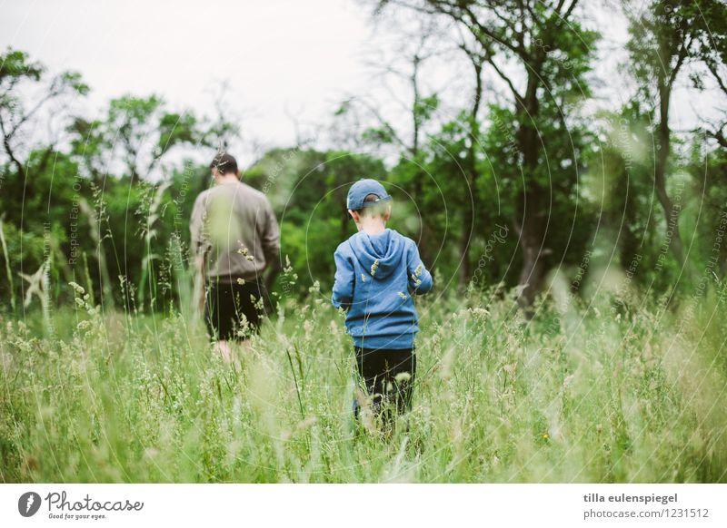 Hänschen klein Mensch Kind Natur Mann grün Sommer Baum Erwachsene Leben Wiese Gras Junge Familie & Verwandtschaft Paar träumen maskulin