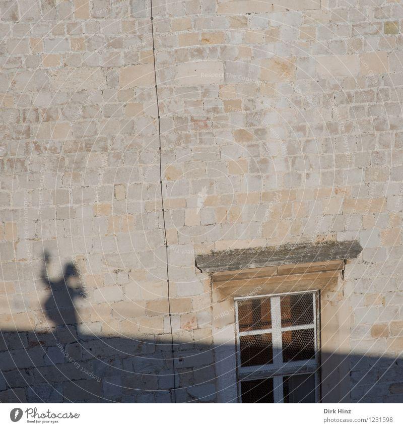 Schattiges Selfie Mensch Ferien & Urlaub & Reisen Sommer weiß Sonne Freude Haus Fenster Wand Leben Mauer grau Stein Lifestyle braun gehen