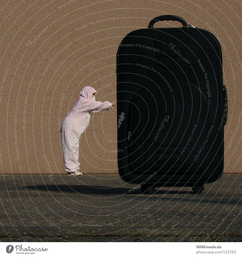 HasenMission | 2008 - schiebung Mensch rot Ferien & Urlaub & Reisen Freude Tier schwarz dunkel klein lustig Kunst orange Eis Arbeit & Erwerbstätigkeit Kraft