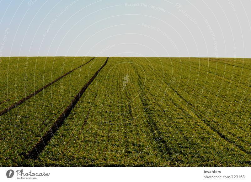 Feld - Spur grün Horizont Furche Aussaat Erde Sand Amerika Himmel blau Ferne Spuren Wege & Pfade Wintergetreide
