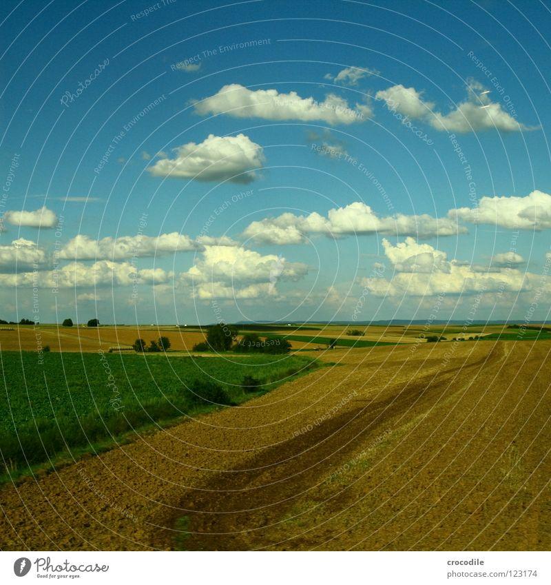 schäfchenwolken über der mitte deutschlands Baum Sommer Wolken Ernährung Wiese Feld Sträucher Landwirtschaft Ackerbau Produktion Blauer Himmel Kulturlandschaft