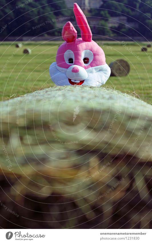 Guck-Guck! Kunst Kunstwerk ästhetisch Hase & Kaninchen Hasenohren Hasenjagd Hasenbraten Hasenzahn rosa Strohballen verstecken Ostern Natur Außenaufnahme