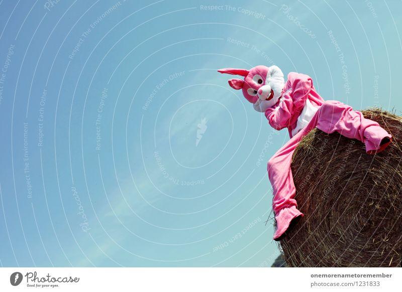 Bunny Checker Jugendliche Erholung Freude lustig außergewöhnlich Kunst rosa modern sitzen ästhetisch warten Kreativität Hase & Kaninchen Kunstwerk
