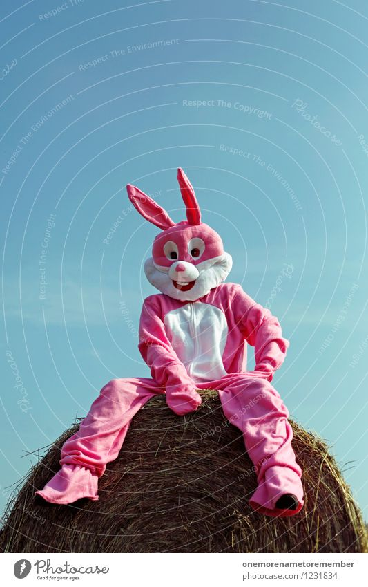 just chillin Kunst Kunstwerk ästhetisch Hase & Kaninchen Hasenohren Hasenjagd Hasenbraten Hasenzahn Hasenpfote sitzen Kostüm Erholung Heuballen Strohballen rosa