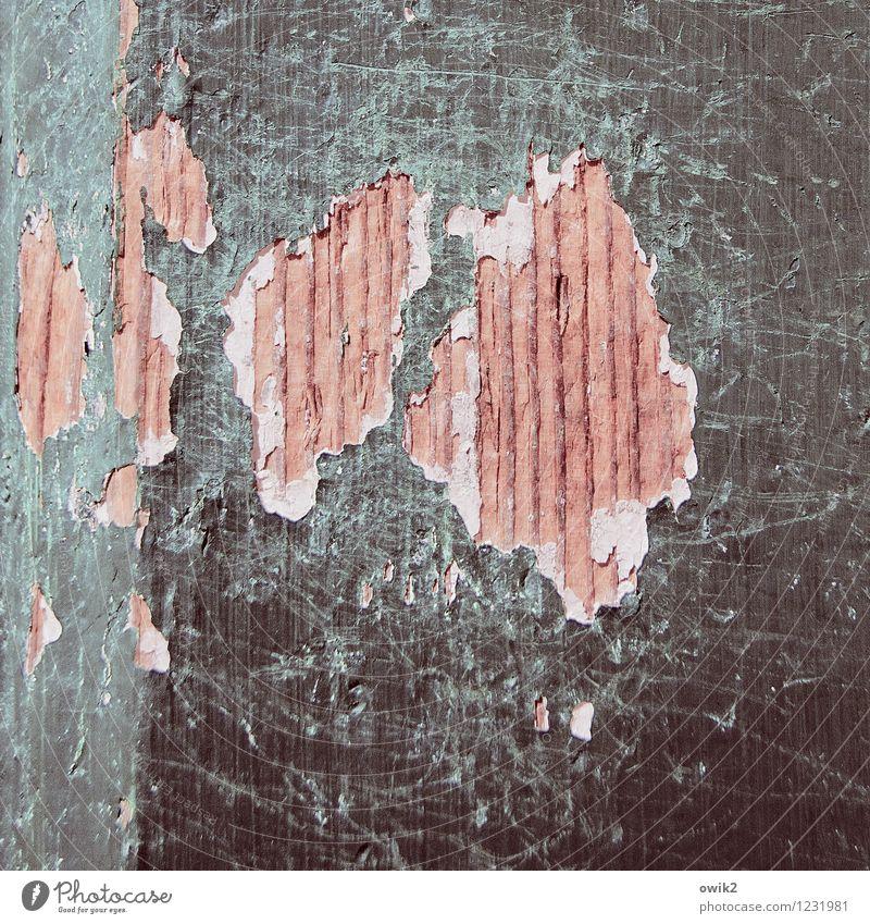 Offene Wunden Tür Holz kaputt Stress Neid Wut Aggression Gewalt Verfall Vergänglichkeit Zerstörung Kratzer Spuren Maserung Farbe Farbfoto Gedeckte Farben