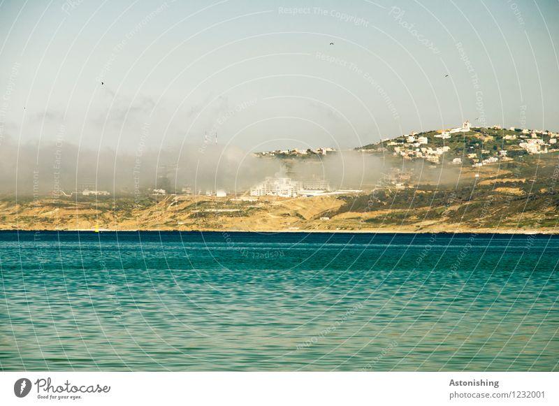 der Nebel kommt Himmel Natur Stadt blau Pflanze Sommer Wasser Meer Landschaft Wolken Umwelt gelb Küste Wetter Luft