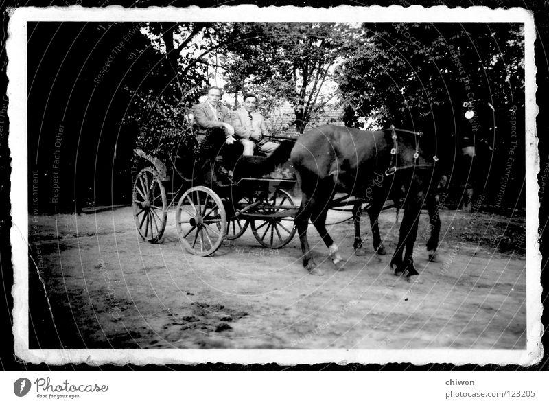 autolose klasse Pferdekutsche schwarz weiß Dorf Wagen Wagenräder Verkehr Verkehrsmittel Autobahn Dinge keine Feinstaubpartikel PKW alt Scan Wege & Pfade Straße
