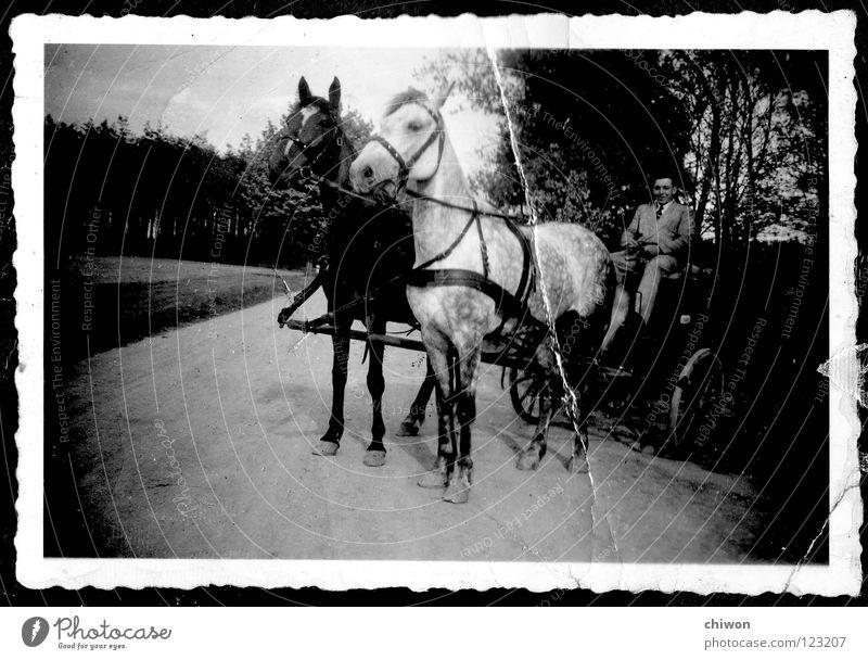 autolose superklasse Pferdekutsche schwarz weiß Dorf Wagen Wagenräder Verkehr Verkehrsmittel Autobahn Dinge keine Feinstaubpartikel PKW alt Scan Wege & Pfade