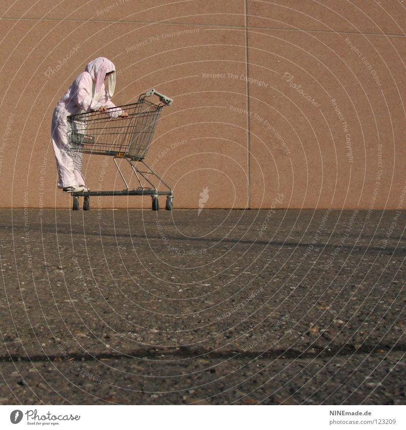 HasenMission | 2008 - cruisen Mensch rot Freude Ferien & Urlaub & Reisen schwarz Tier dunkel Arbeit & Erwerbstätigkeit Bewegung orange Metall Kunst lustig