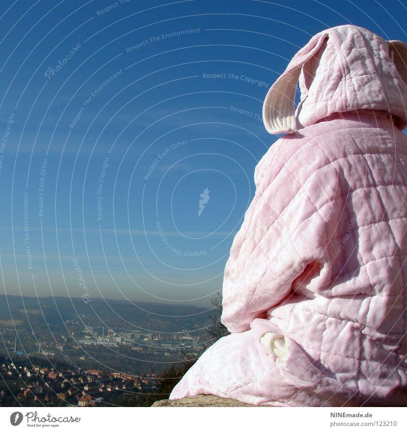 HasenMission | 2008 - aussicht JENA Hase & Kaninchen Ostern rosa weiß Mauer Quaste kuschlig himmelblau Aussicht genießen schön Physik Denken Stadt Student Dinge