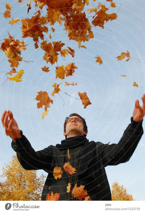 hoch hinaus Mensch Natur Mann Blatt Freude Erwachsene gelb Leben Herbst Glück Freiheit fliegen orange Zufriedenheit frisch frei