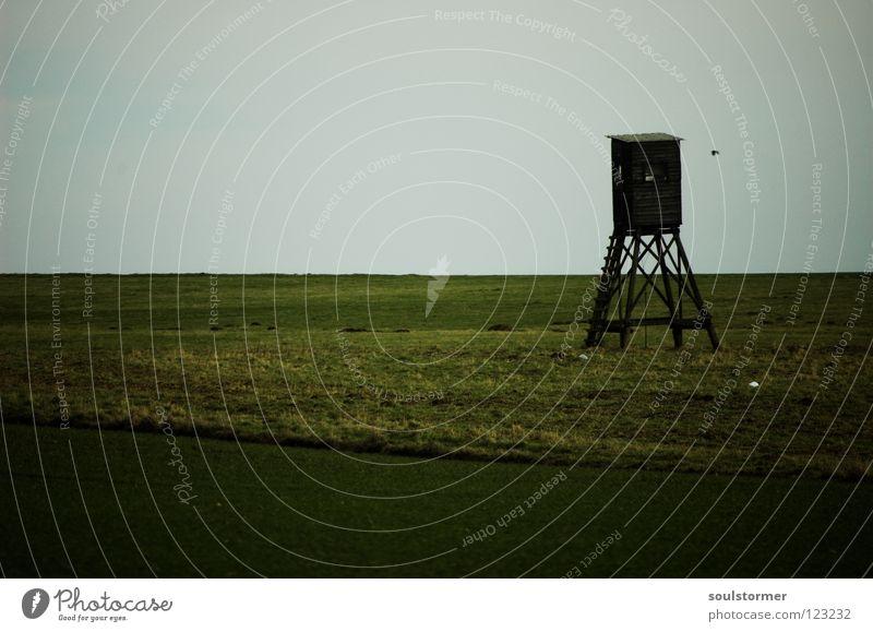 Selbstmord im Hochsitz - Zu Tode gehungert... grün Wiese grau Traurigkeit Treppe warten Trauer Jagd Sitzgelegenheit Verzweiflung Jäger Gerüst verhungern