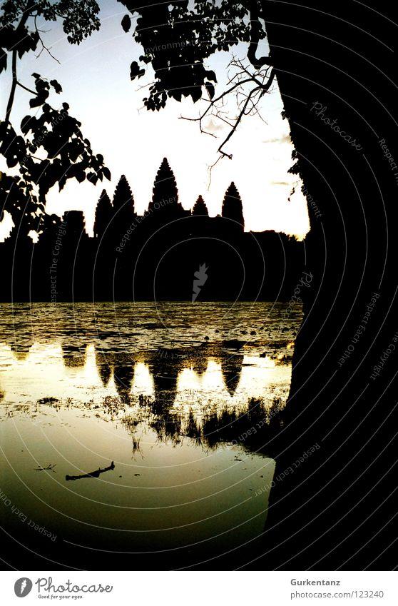 Schattenspiele in Angkor Wasser Baum See gold Turm Asien Skyline Denkmal Baumstamm Wahrzeichen Abenddämmerung Tempel Gotteshäuser Abendsonne Kambodscha