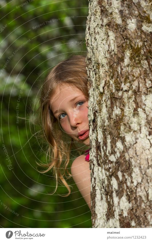 Kuckuck hier bin ich Freude schön Spielen Kinderspiel Sommer Schulkind Mädchen 1 Mensch 3-8 Jahre Kindheit Natur Frühling Baum blond langhaarig entdecken