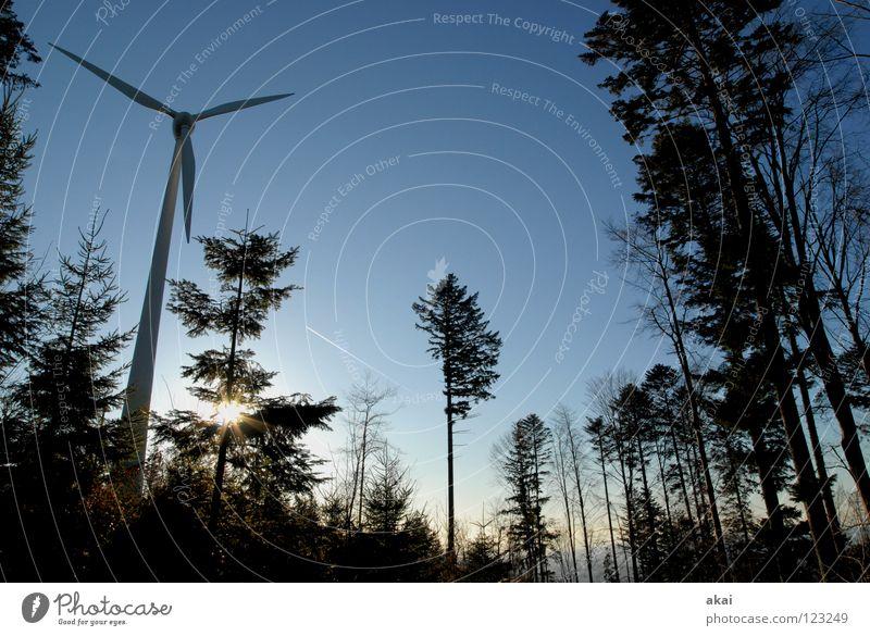 Windkraft am Roßkopf 7 Himmel Nadelbaum Wald himmelblau Geometrie Laubbaum Perspektive Nadelwald Waldwiese Paradies Waldlichtung Windkraftanlage Elektrizität