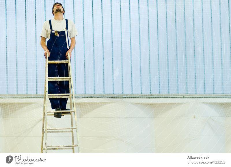 neugierig Mann Arbeit & Erwerbstätigkeit oben Fenster Suche hoch Klettern Neugier Handwerk Leiter Lagerhalle Karriere Hälfte aufsteigen Handwerker Reparatur