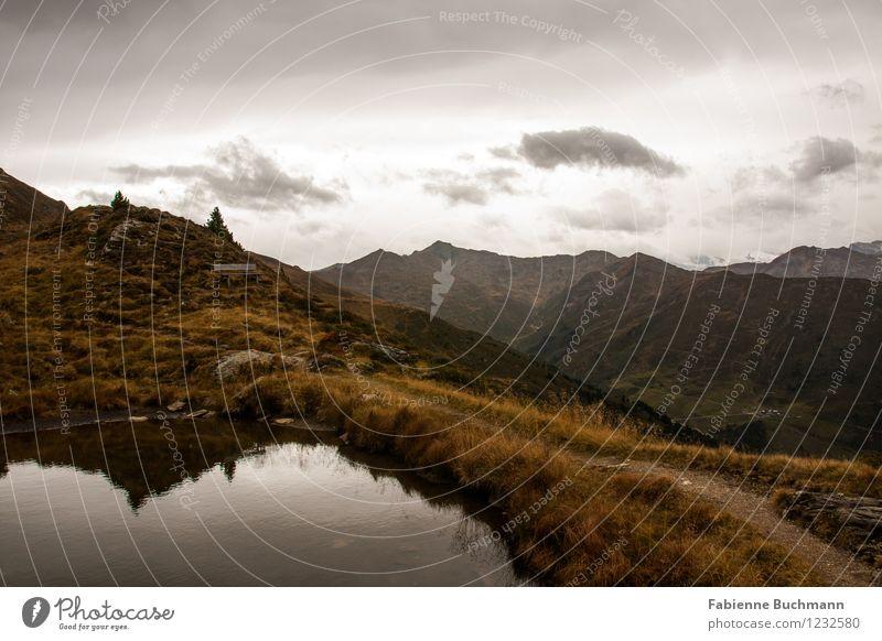 See sehen I Umwelt Natur Landschaft Pflanze Erde Wasser Himmel Wolken Herbst schlechtes Wetter Gras Sträucher Wildpflanze Alpen Berge u. Gebirge Stein dunkel