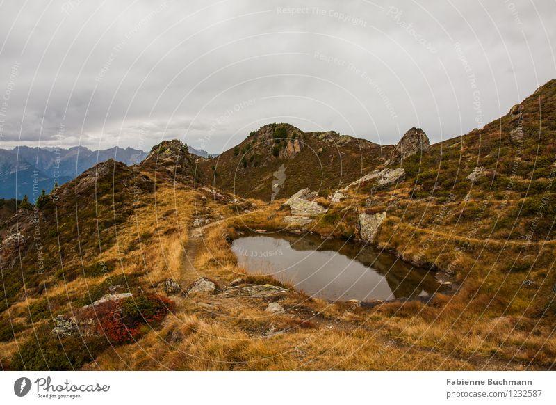 See sehen II Natur Pflanze Wasser Landschaft Wolken Ferne dunkel Umwelt Berge u. Gebirge Herbst Gras Wege & Pfade Felsen Wetter Sträucher