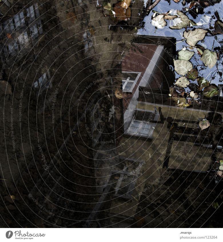 Altstadt (dramatisch) Wasser Blatt Haus dunkel träumen Architektur trist bedrohlich Desaster Pfütze Altstadt Gewässer