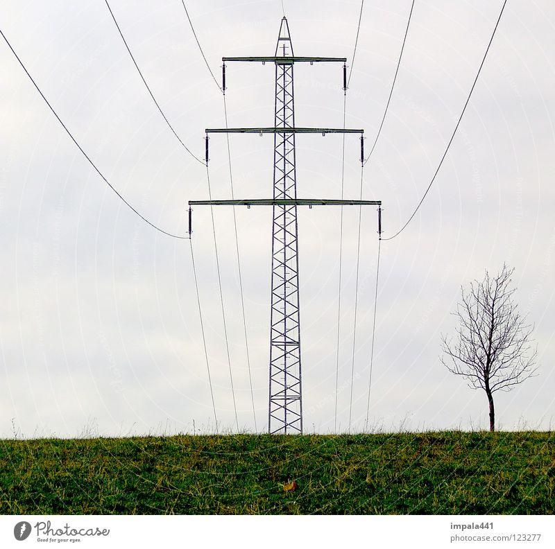 hochspannung Elektrizität elektronisch Smog Umwelt Zerstörung Baum Holzmehl Wiese klein groß Haushalt Kraft Strommast Kabel Seil Metall Energiewirtschaft