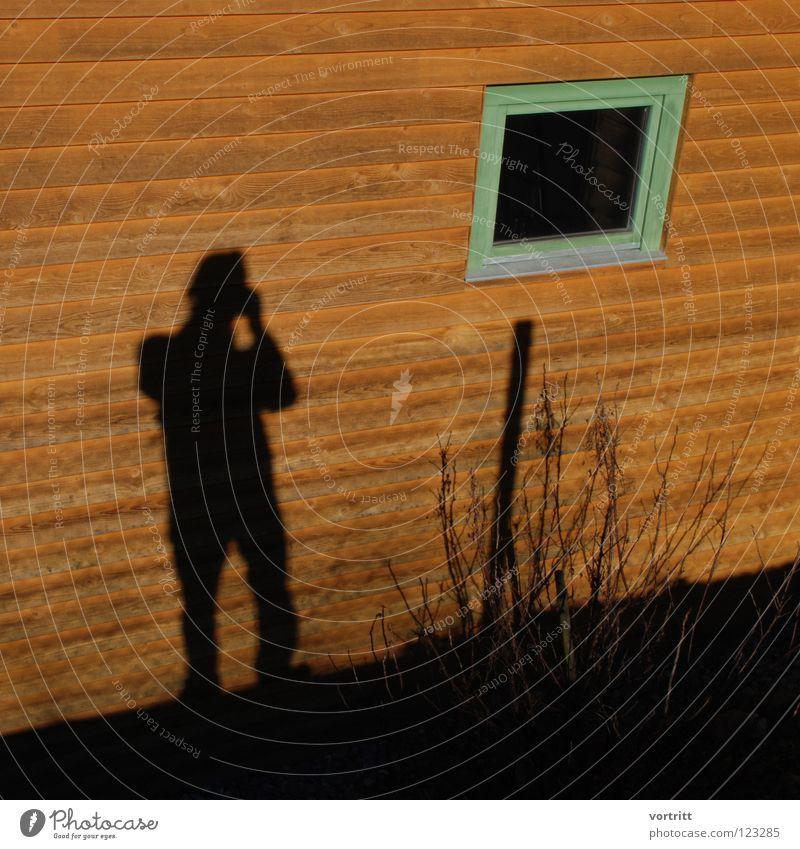 spion Haus Fenster Sträucher Fotograf spionieren reduzieren sehr wenige Holz Wand Selbstportrait Mann Winter Schatten hag Farbe Blick Voyeurismus Mensch