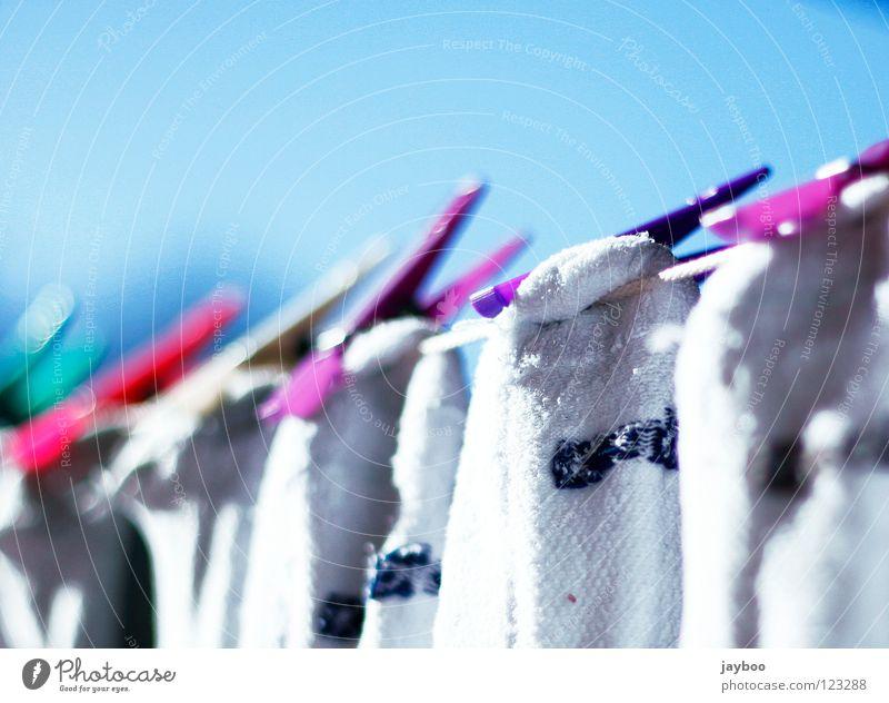 Alles frisch Wäsche Klammer grün nass trocken Sauberkeit weiß Haushalt rein rot mehrfarbig Strümpfe violett Seil Himmel blau Schönes Wetter Wäsche waschen