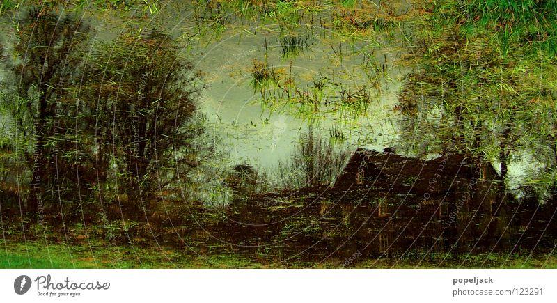 Impressionistische Wiesenmalerei Haus Baum Gras nass Sumpf Moor Halm kalt Wasser Bild streichen Flut Regen Wetter
