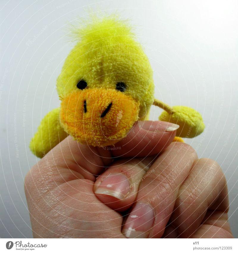 EntenShoot | Guguus Hand Freude gelb Spielen Haare & Frisuren lustig Finger Spielzeug verstecken Schnabel Punk Fingernagel Faust Zeigefinger Vorderseite