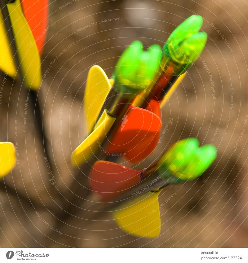 schießübung Ferne Lampe gefährlich bedrohlich Freizeit & Hobby Pfeil Jagd Neonlicht Bogen töten schießen Bogenschütze