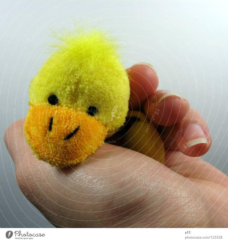 EntenShoot | Müde Hand Freude gelb Spielen Haare & Frisuren lustig Kindheit liegen Finger schlafen Spielzeug Müdigkeit Punk Schnabel Geborgenheit