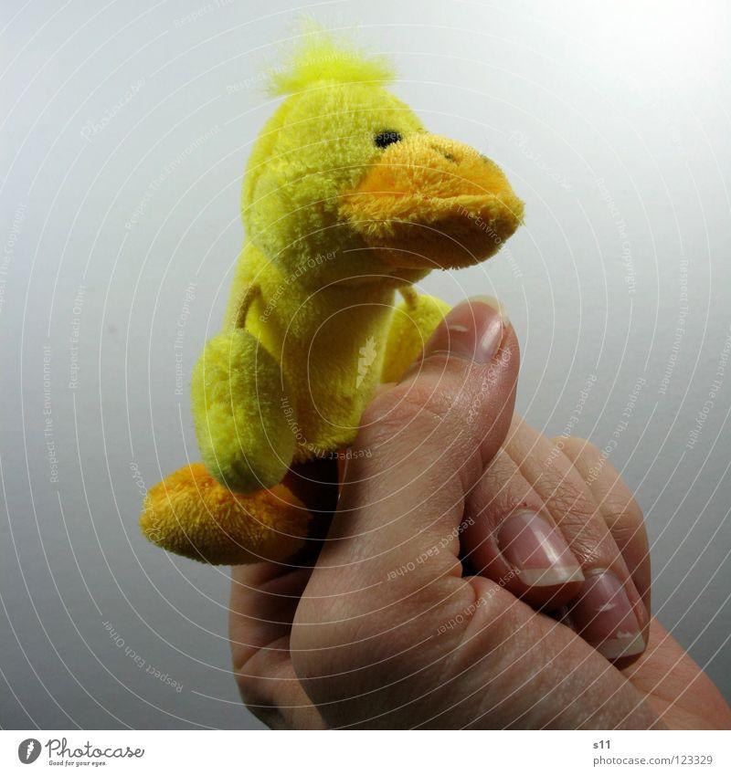 EntenShoot | Aufgeweckt Hand Freude gelb Spielen Haare & Frisuren lustig Fuß Arme Finger Spielzeug Seite Ente Punk Schnabel Daumen Fingernagel