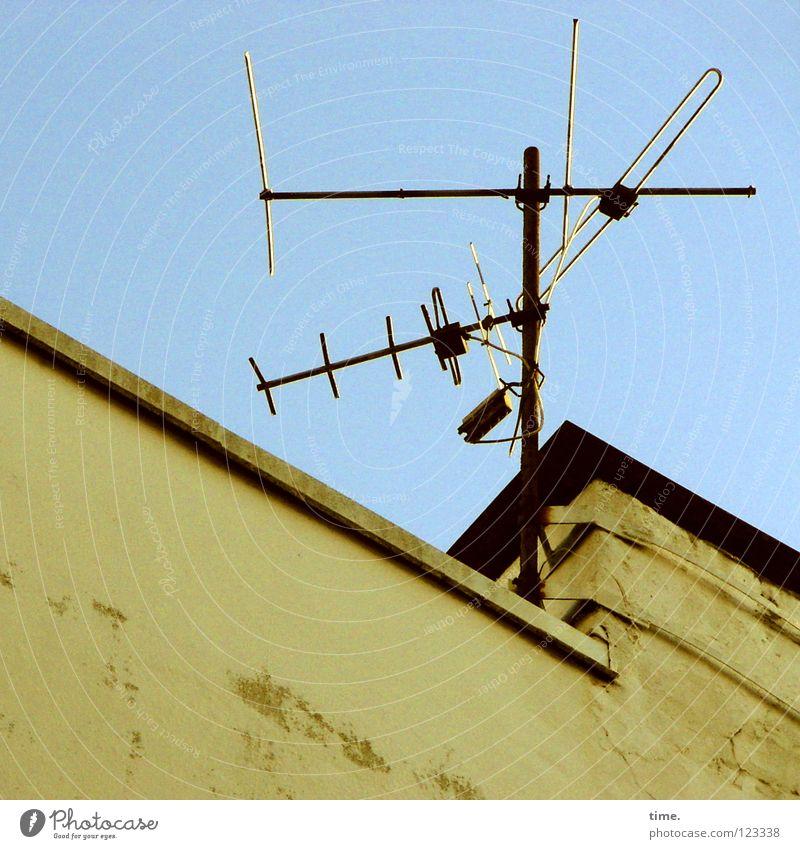 GEZ-Bäumchen alt Wand Mauer Metall authentisch Dach Draht Antenne Blech Aluminium Schrott veraltet Flachdach Vor hellem Hintergrund Dachantenne