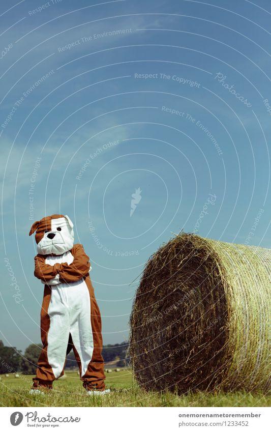 peace out Hund Freude Kunst ästhetisch warten Coolness Kunstwerk Kostüm Karnevalskostüm spaßig Ghetto Spaßvogel Strohballen verschränken Hundeschnauze