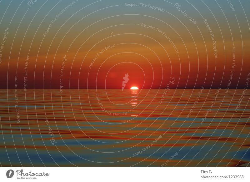 Sonnenuntergang Wasser Himmel Wolkenloser Himmel Stern Sommer Schönes Wetter Ostsee Meer Romantik Farbfoto Außenaufnahme Menschenleer Abend Dämmerung