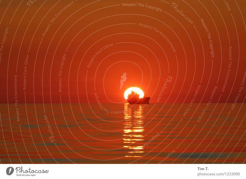 Baltic Sea Umwelt Natur Wasser Himmel Horizont Sonne Sonnenaufgang Sonnenuntergang Sommer Ostsee Meer Schifffahrt Containerschiff Wasserfahrzeug träumen