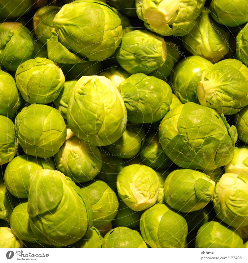 Rosenkohl Blume grün Winter Blüte klein Kochen & Garen & Backen Ball Kugel Gemüse lecker Geruch Markt Kohlgewächse Vegetarische Ernährung