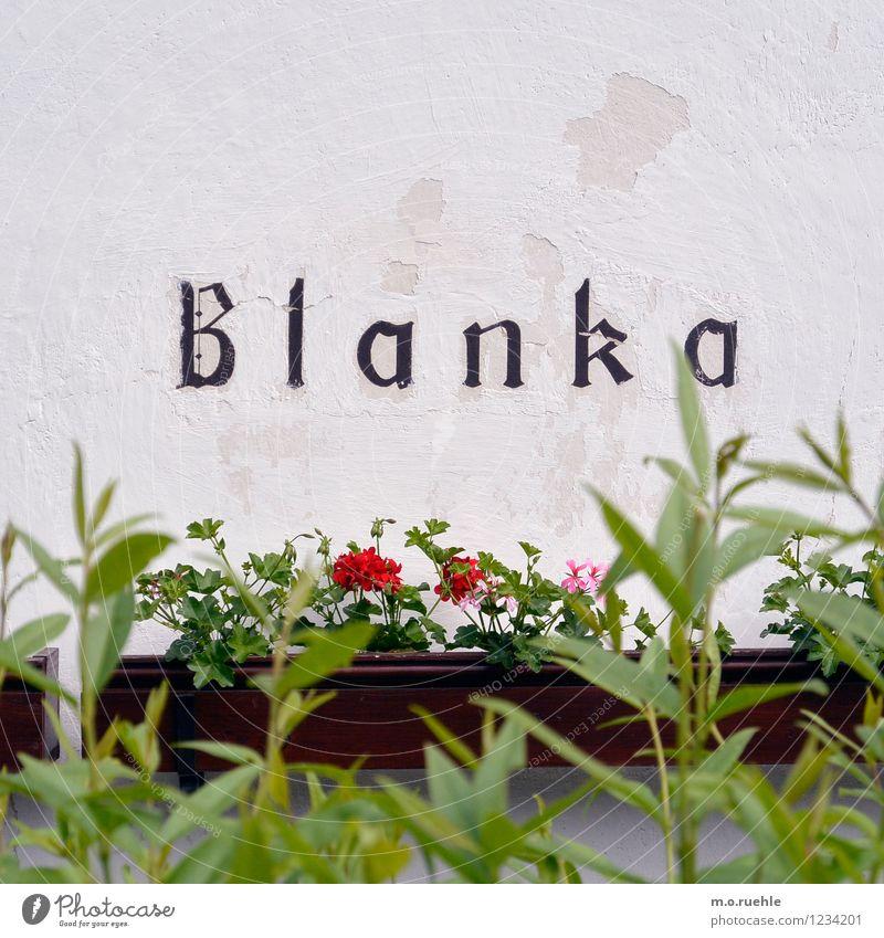 Blanka Dorf Menschenleer Haus Fassade weiß authentisch Farbfoto Gedeckte Farben Außenaufnahme Textfreiraum links Textfreiraum rechts Textfreiraum oben
