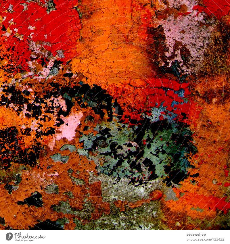 ab_4a orange rosa Oliven