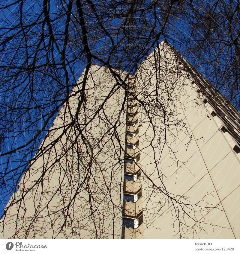my home is my castle II Himmel Baum blau Haus Wolken gelb kalt Wand oben Tod Fenster grau Mauer Linie Zusammensein Kraft